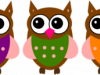 pink-owl